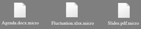 Remova dos ficheiros .micro