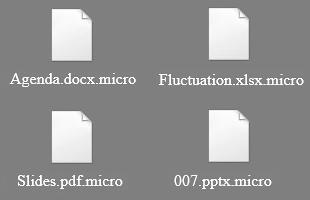 ficheiros .micro